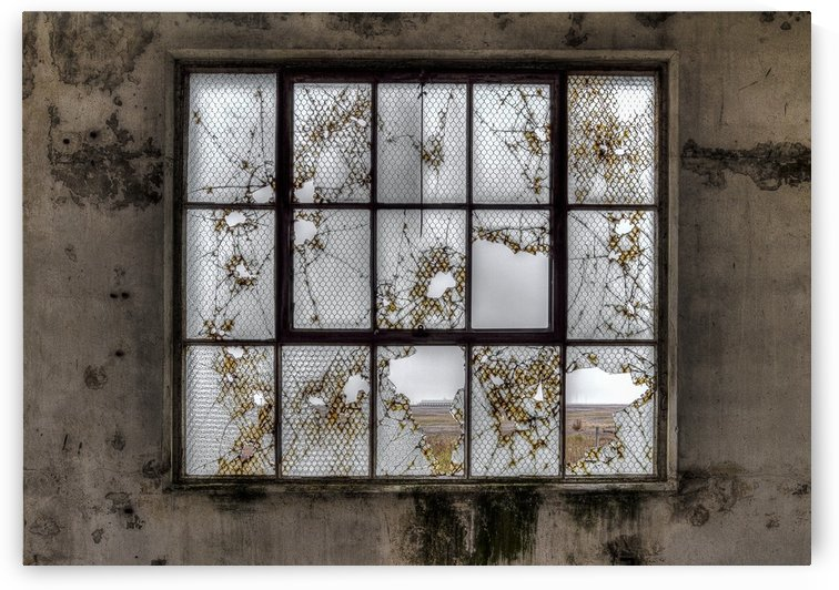 Window dereliction by Keith Truman
