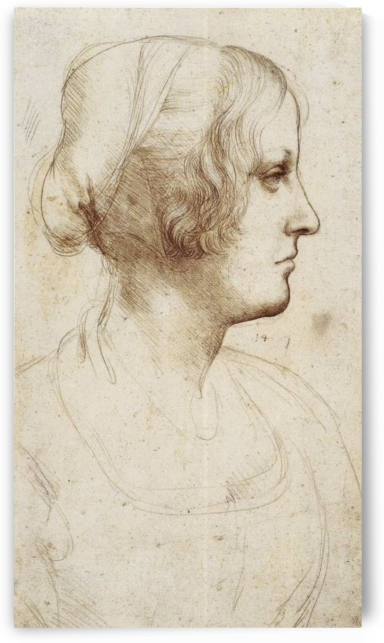 Head of girl by Leonardo da Vinci