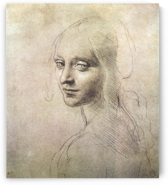 Head of a girl by Leonardo da Vinci