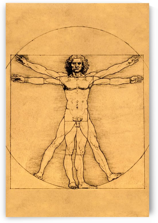 Human Body by Leonardo da Vinci
