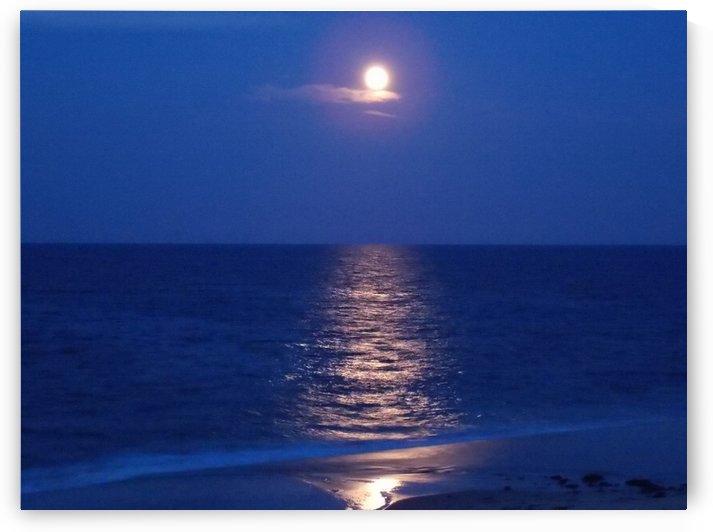Moonrise by Tammy Shook aka Kelra