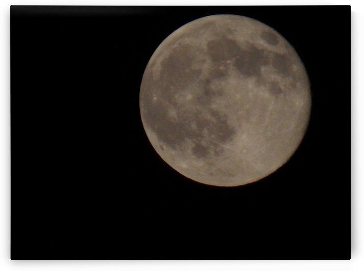 Super Moon 4 by Tammy Shook aka Kelra