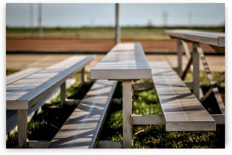 Sports Baseball 6 by Rachel Serrano