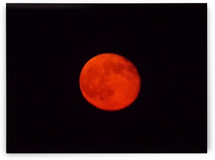Super Moon 2 by Tammy Shook aka Kelra