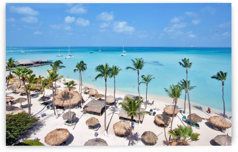 Caribbean View by Melissa McGhee