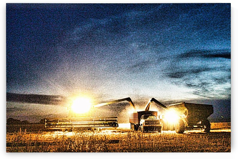 Creative Harvest Lights by Marty Kugler