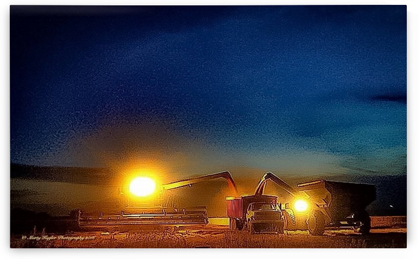 FRIDAY NIGHT HARVEST LIGHTS by Marty Kugler