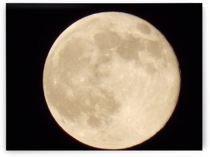 Super Moon by Tammy Shook aka Kelra