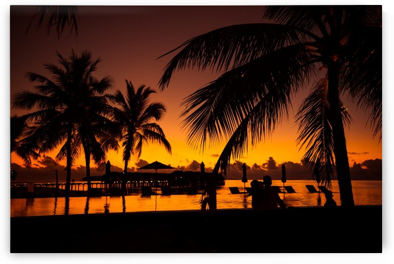 Palm trees silhouette on sunset tropical beach by Levente Bodo