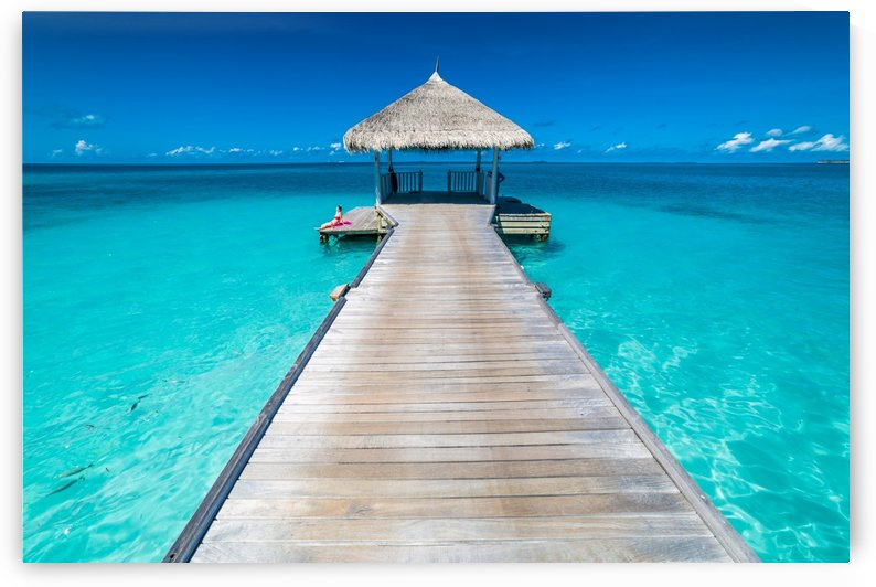 View of water bungalow in tropical island, Maldives, Indian ocean by Levente Bodo