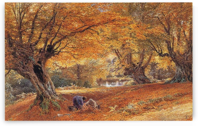 Burnham beeches by Myles Birket Foster