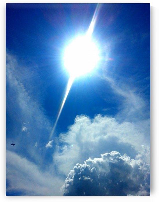 Bright & Sunny by Shutterbug