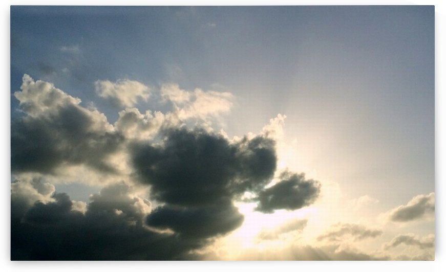 Sunny days by Shutterbug