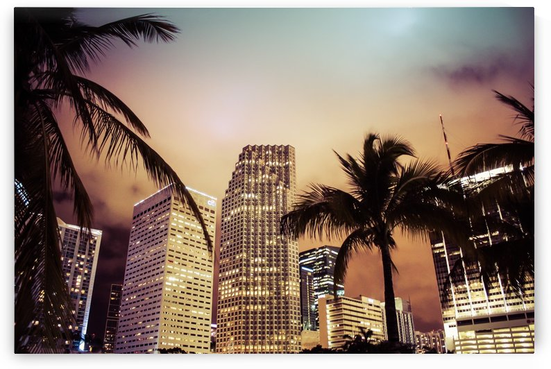 City Skyline by Danielle Farrell