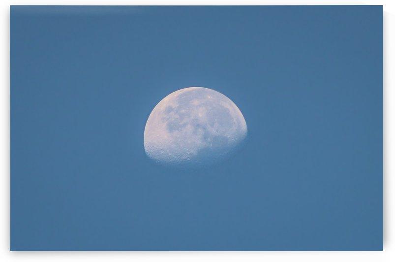 Half Moon by Danielle Farrell