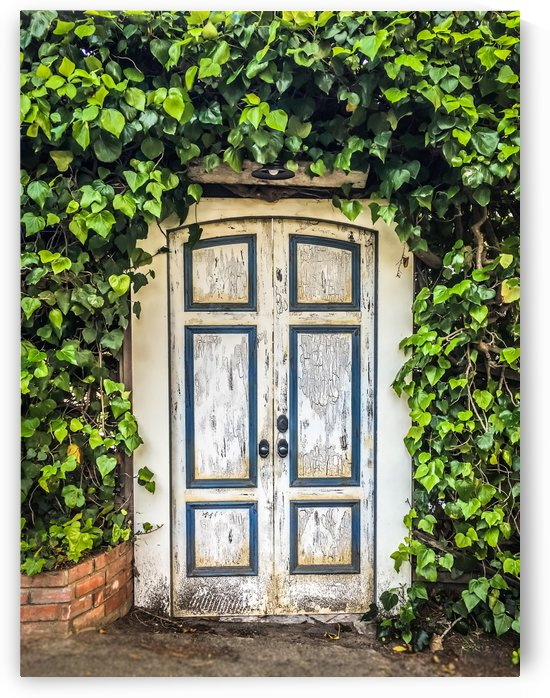 Door to Dreamland by Danielle Farrell