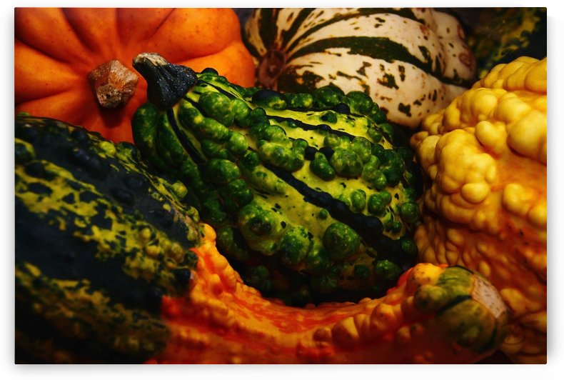 Courges by Richard and Barbara Jones
