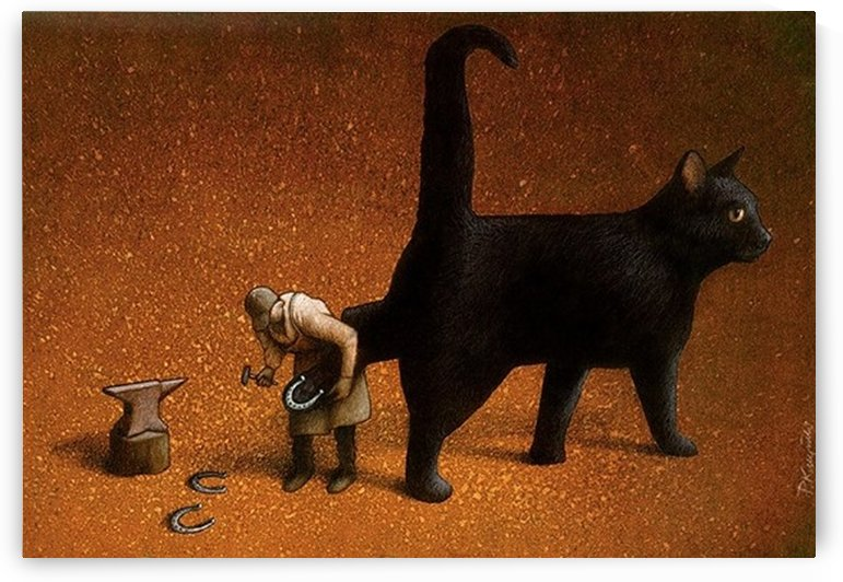 Black cat by Pawel Kuczynski
