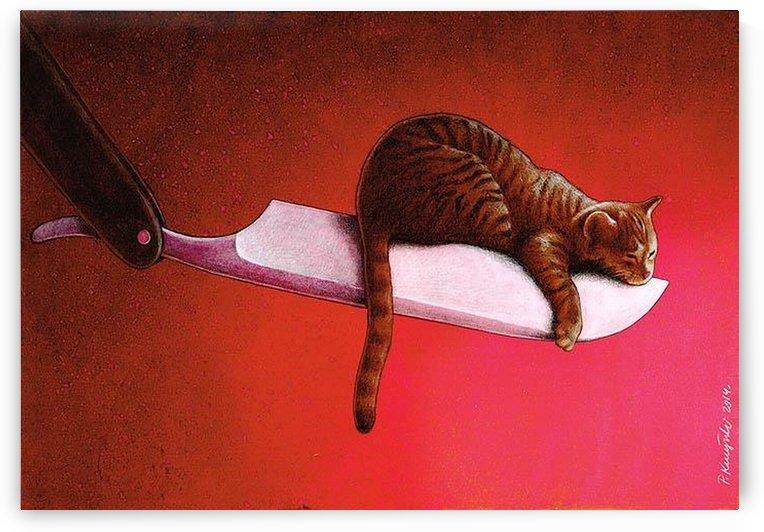 Razor  Cat by Pawel Kuczynski