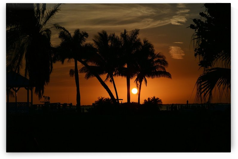 Tropic Sunset I by Digitalu Photography