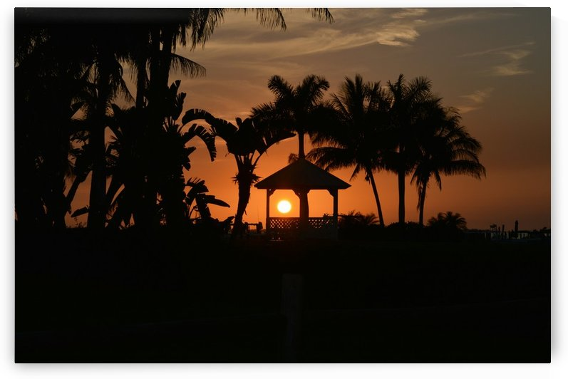 Tropic Sunset III by Digitalu Photography