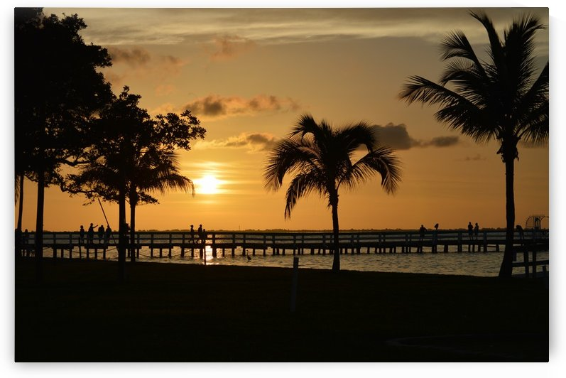 Tropic Sunset  by Digitalu Photography