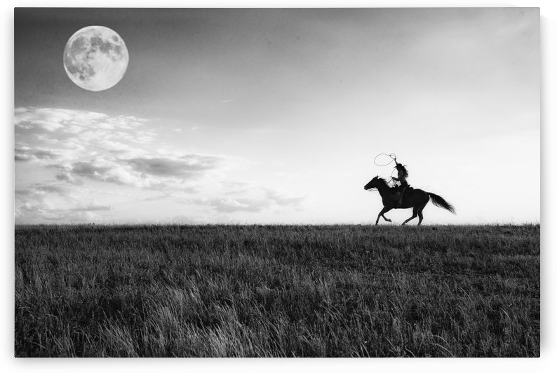 Chase Your Dreams by Kathy Cline Photography