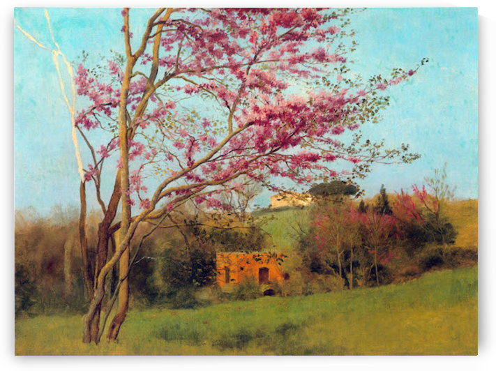 Landscape Blossoming Red Almond study by Godward by Godward