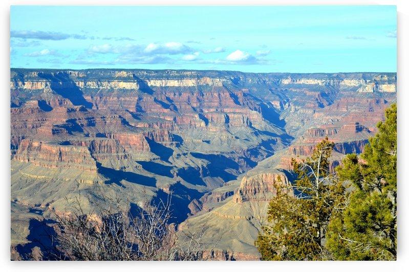 Grand Canyon  Vista by BK