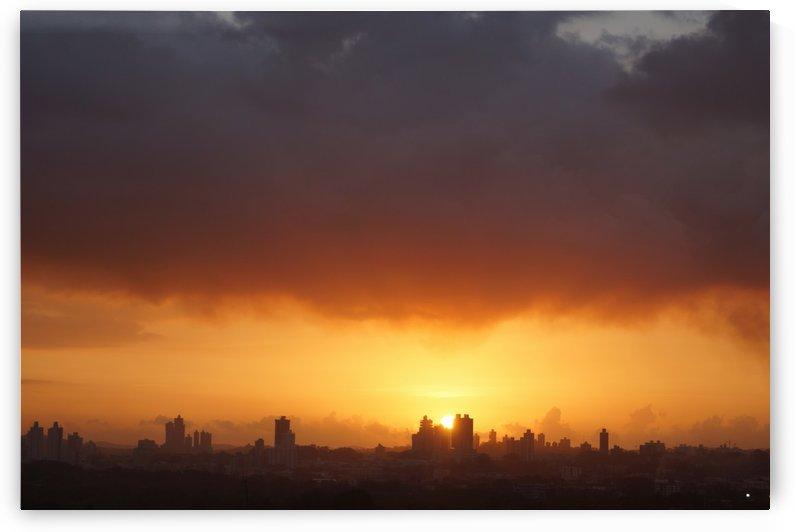Pollution by Luis Augusto Henriquez