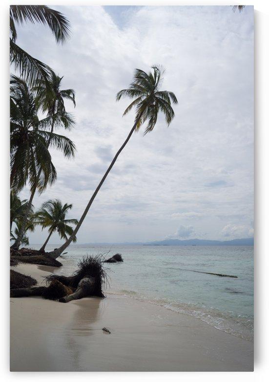 San Blas Island 3 by Luis Augusto Henriquez