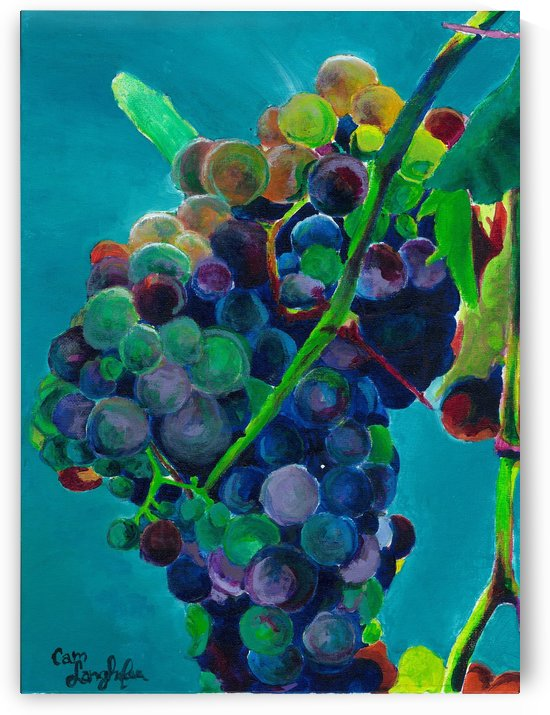 Grapes by Cameron Jared Langhofer