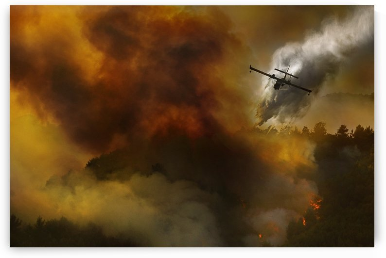 Fire in National Park of Cilento (SA) - Italy by 1x