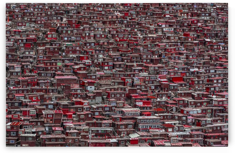 Red houses by 1x