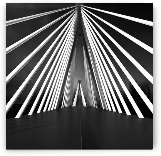 Big String Bridge by 1x