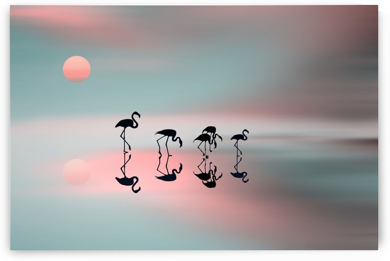 Family flamingos by 1x