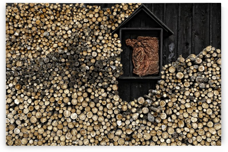 Wooden madonna by 1x