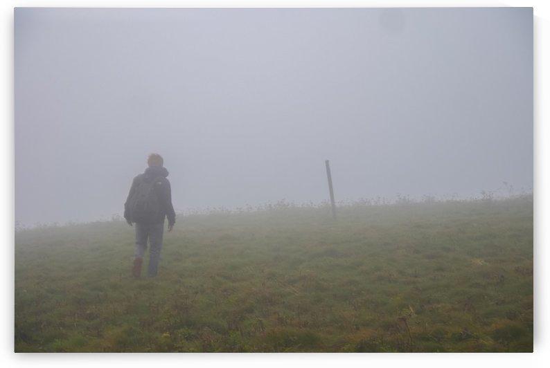 Foggy Path by Forrest Blais