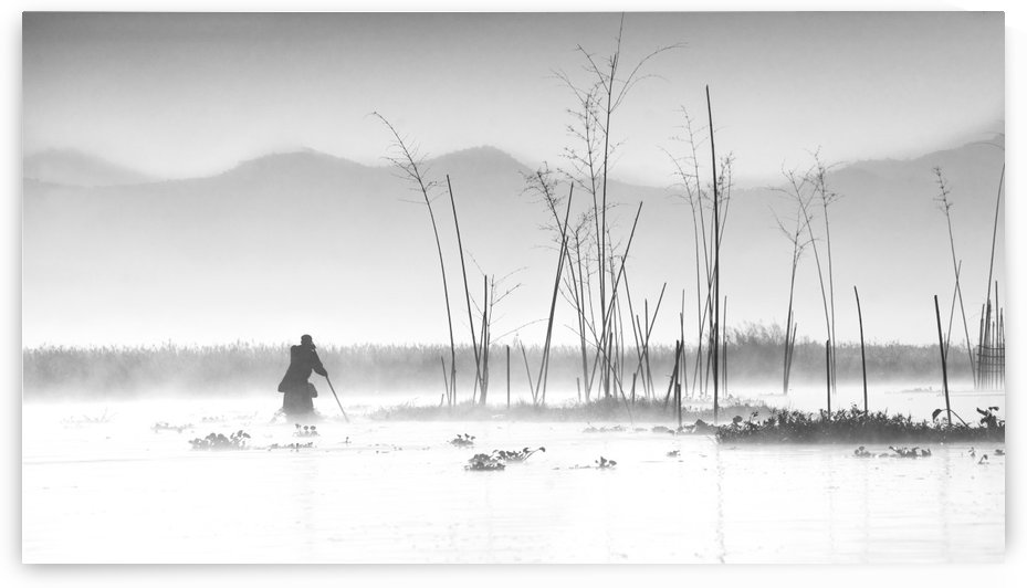 Fishing in a misty morning by 1x