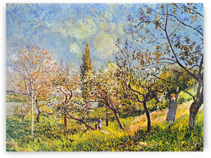 Orchard in spring by Sisley by Sisley