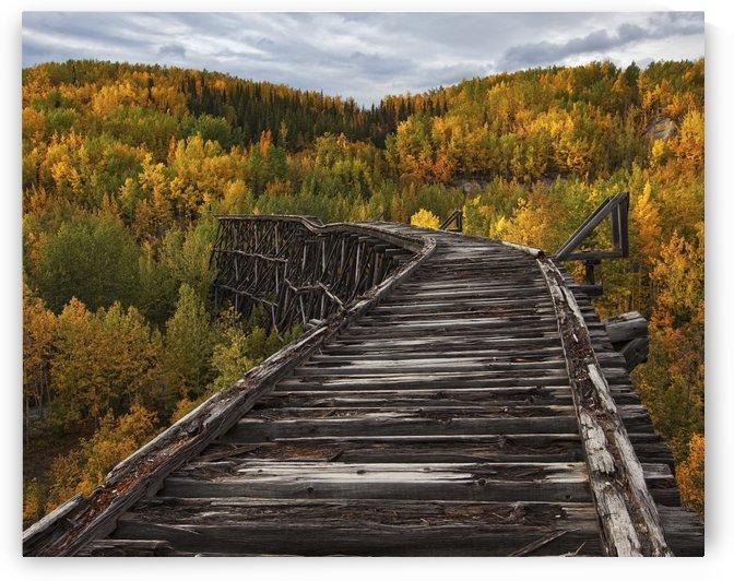 Bridge to Nowhere... by 1x