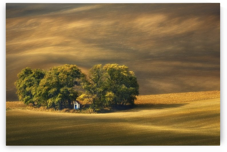Moravian fields... by 1x