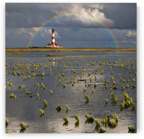 Lighthouse meets Rainbow by 1x