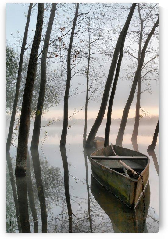 Serene Dawn by 1x