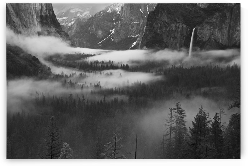 Fog Floating In Yosemite Valley by 1x