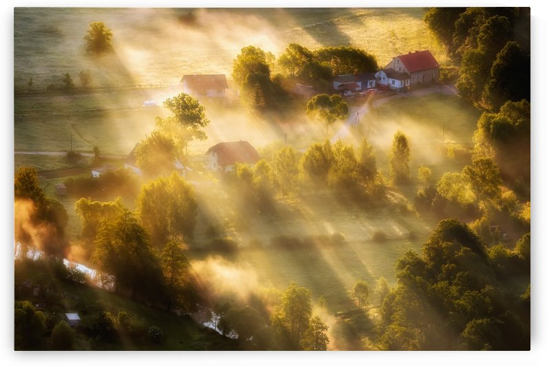 in the morning sun by 1x