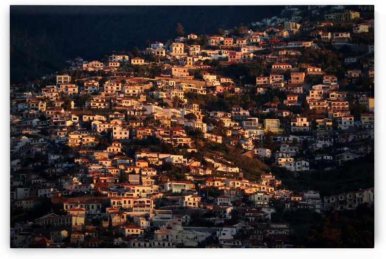 Funchal by 1x