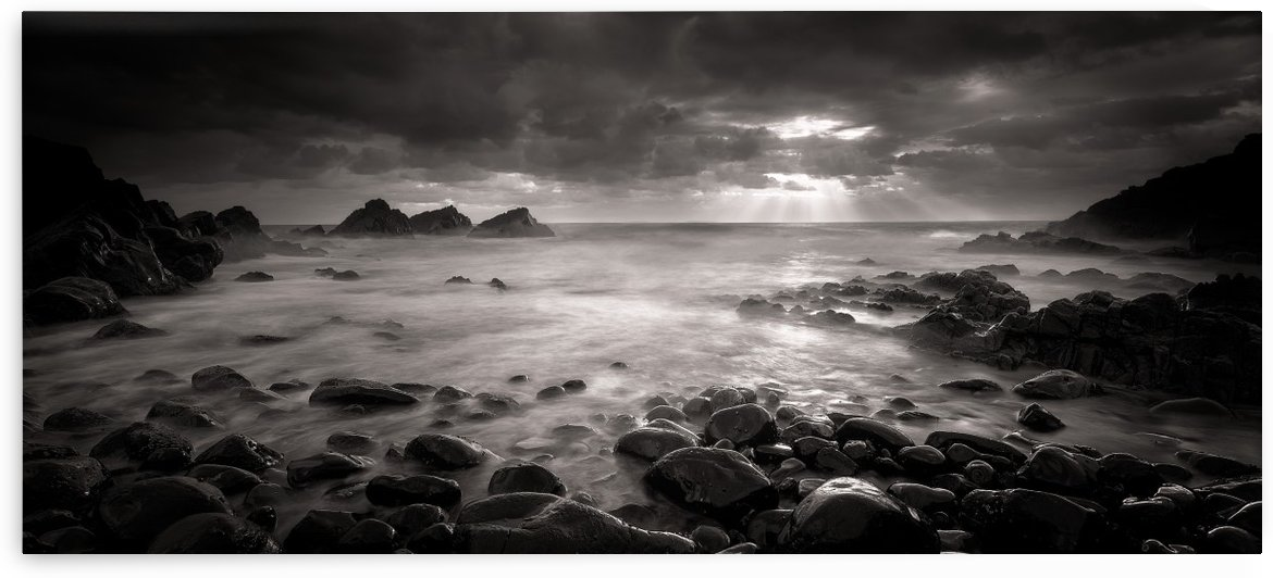 Crescent Head Rays by 1x