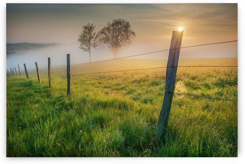 morning sun by 1x
