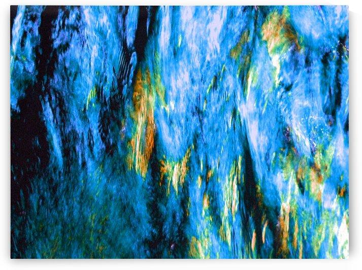 Elephant Blue by Robert Heckerl